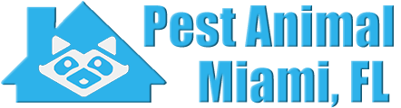 Miami Wildlife and Animal Removal